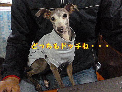 f_20120227071008.jpg