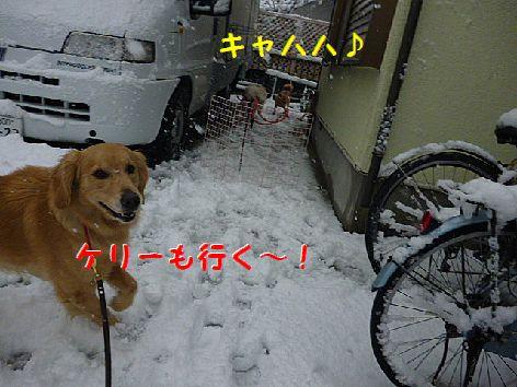 f_20120301070502.jpg