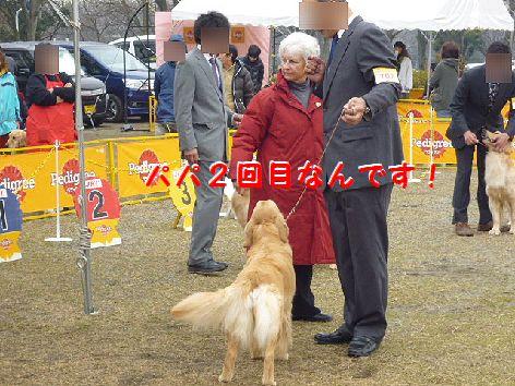 f_20120319103436.jpg