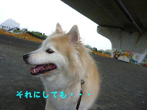 f_20120503094629.jpg