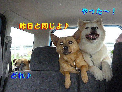 f_20120504092222.jpg