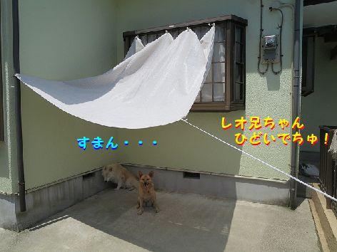 f_20130704074015.jpg