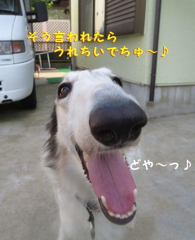f_20130710075244.jpg