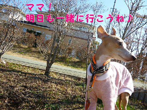 g_20120221071139.jpg
