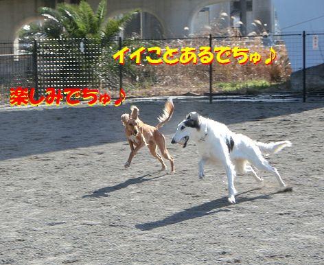 h_20140130074216ab8.jpg