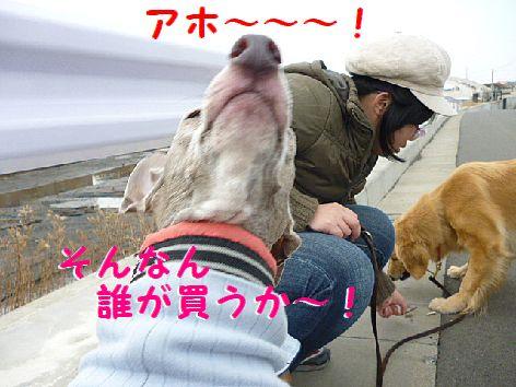 i_20120225094326.jpg