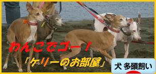 itabana2_20130705074350.png