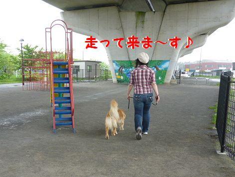 k_20120503094700.jpg