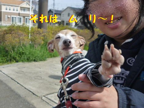 l_20120409065851.jpg