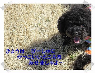 IMG_3067-1.jpg