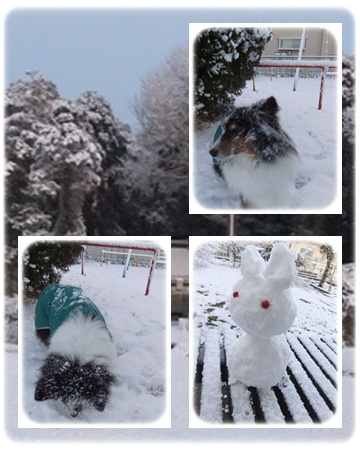 2012雪3