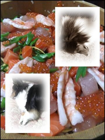 ばちらし寿司2