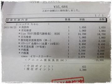 DSCF6228s.jpg