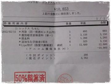 DSCF9250s.jpg