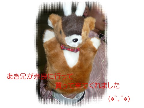 P1020575.jpg