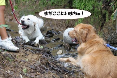 ★川遊び4