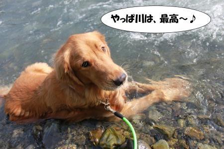 ★川遊び13