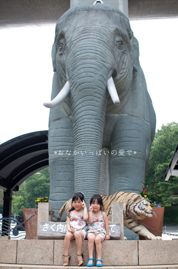 多摩動物公園 1