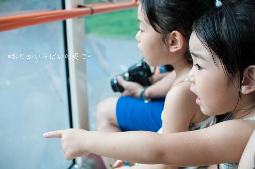 多摩動物公園 6