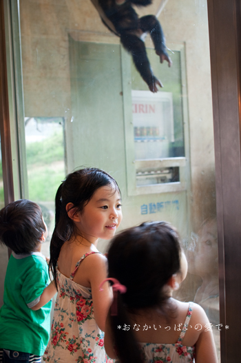 多摩動物公園 8