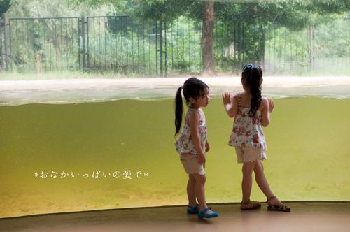 多摩動物公園 10