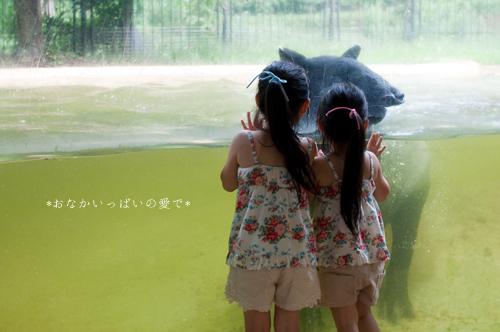 多摩動物公園 14