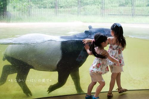 多摩動物公園 15