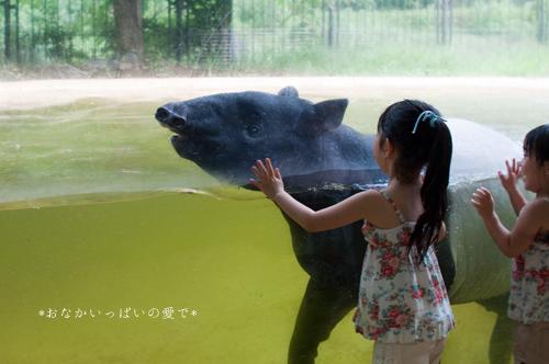 多摩動物公園 16