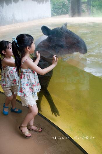 多摩動物公園 17