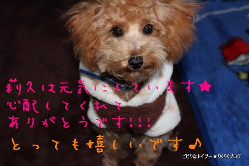 1-IMG_0906_20120417042008.jpg