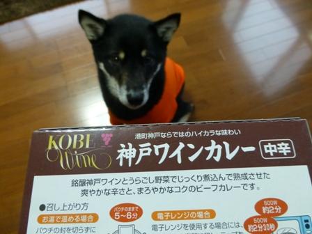 神戸ワインカレー3