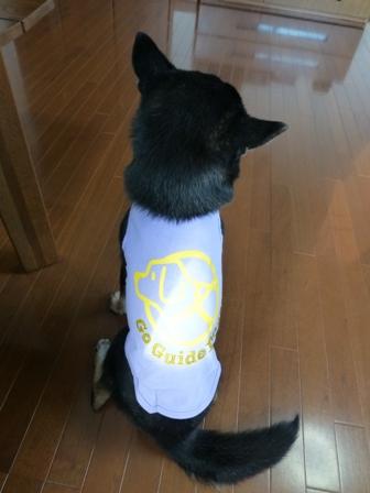 盲導犬サポートSHOP15