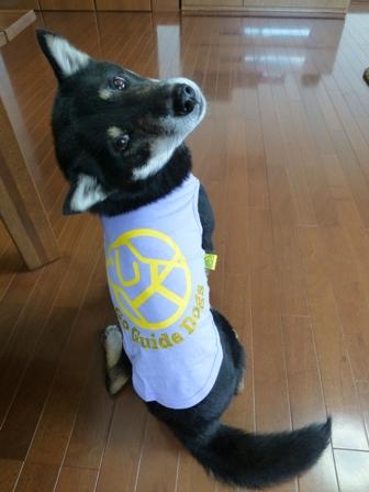盲導犬サポートSHOP16