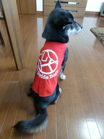盲導犬サポートSHOP21