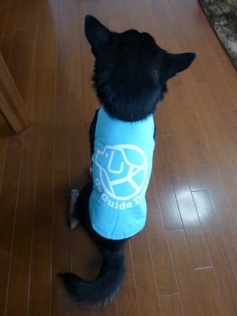 盲導犬サポートSHOP31