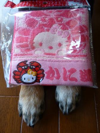 かに道楽キティ6