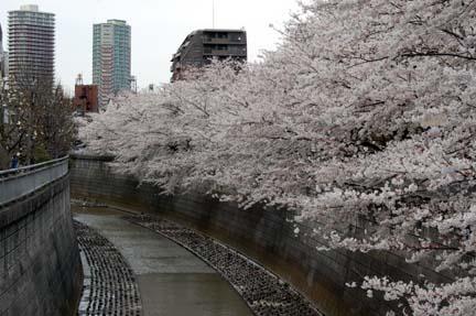 2008-03-29_192.jpg