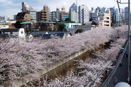 2008-03-29_215.jpg