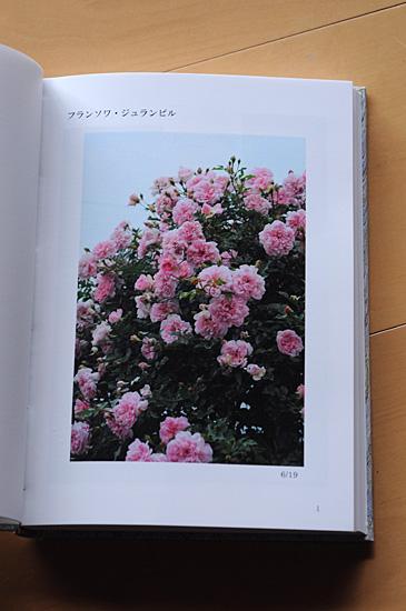 DSC_0061-s_2013121318172195e.jpg