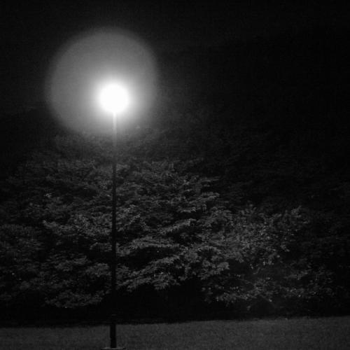 20110827_f.jpg