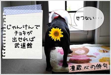 ナンバー47 凛ちゃん