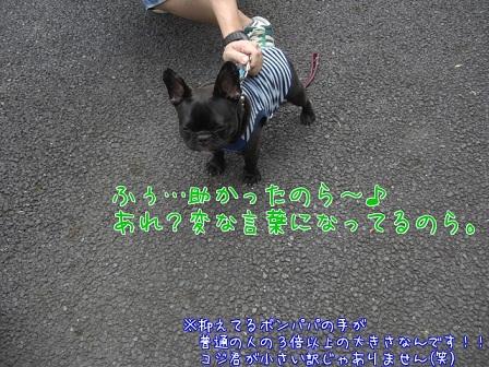 2011.9.22 6