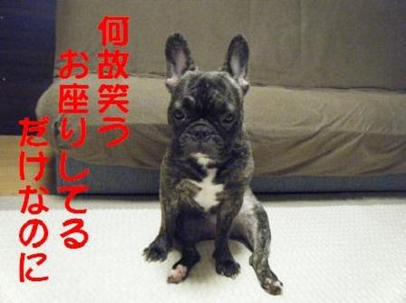 ナンバー54 心桜ちゃん2