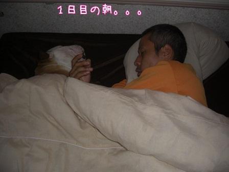 2011.10.3 4