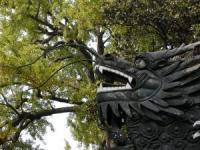 上海豫園-4