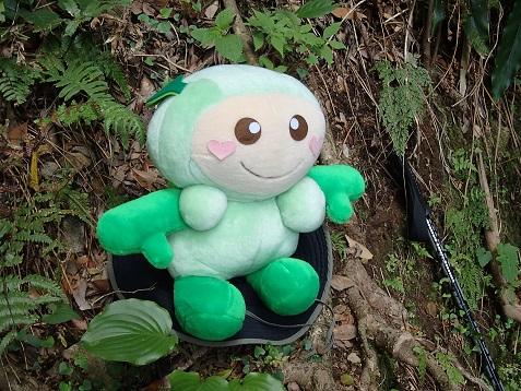 森の妖精シャジー