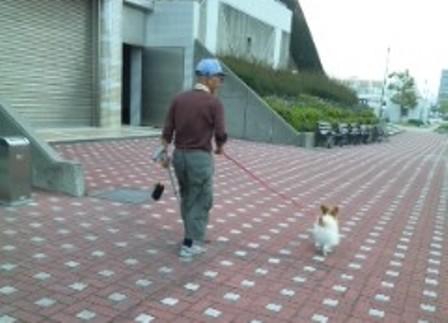 お散歩大好き
