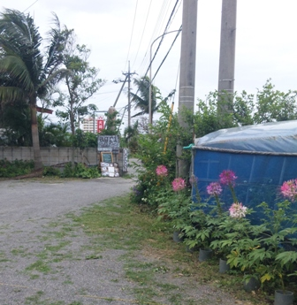 agri cafe:入り口・駐車場