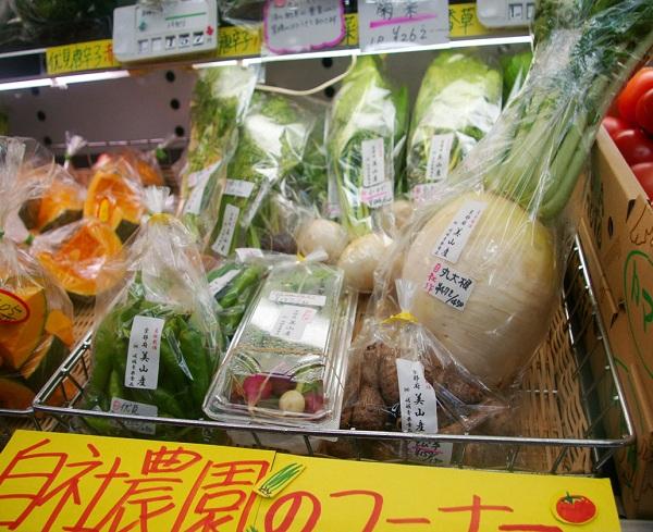 blog_kiyamachi03.jpg