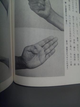 140204_真蔭流の手刀